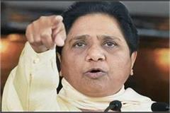mayawati s advice central government should review its policies and