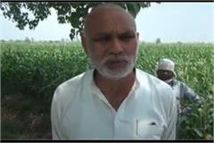 padma shri awardee kisan kanwal singh facing lockdown