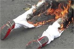 bjp burnt effigies of former cm kamal nath