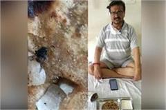 doctor opens kovid care center poll fly out of food video goes viral