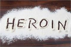 heroin smuggler arrested