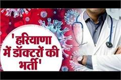 haryana government will recruit 300 doctors