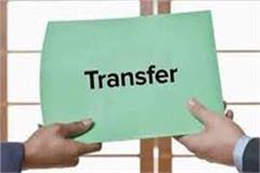 shimla school cadre principal transferred