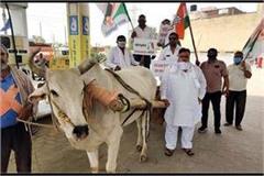 congressmen protesting in faridabad