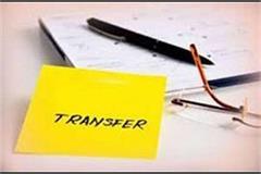 22 dsp transfer