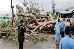 one seriously injured after falling tree in chamunda