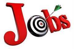 himachal government gave job opportunity to 5th and 8th pass