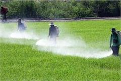 manure seed pesticide shops will also open in up