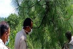 dead body of dadhol s missing person found hanging from tree