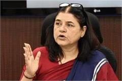 petitions filed in maneka gandhi s journalists calling her blackmailer