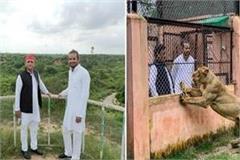 akhilesh lion safari tej pratap new wind of development sp government in up