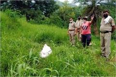 deadbody of peon of pwd found from bushes