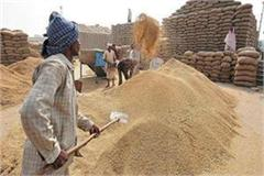 preparation by center to implement silosproject for wheat storage in the country