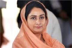 harsimrat kaur badal decided to contest elections lambi
