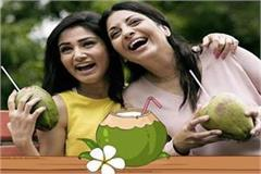 doctors corona will not stray due to the consumption of coconut water