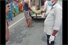 kushinagar luxury bus going at high speed crushed 3 2 killed