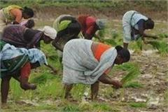 first effect of agricultural bill