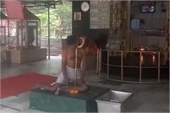 person commited suicide in temple