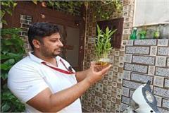 administration alert regarding dengue