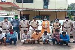 up stf got huge success 9 ganja smugglers arrested