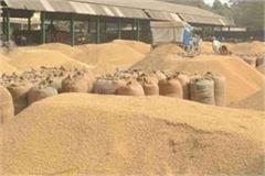 paddy procurement starts from september 27