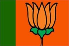 bjp gets more than 60 per cent candidates in municipal election