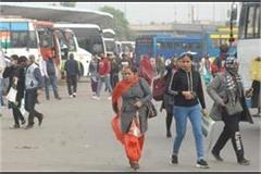 punjab roadways buses running despite the risk of rain