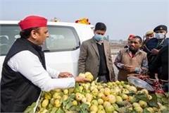 akhilesh stopped on the hand said  prayagraj guava