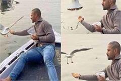 team india batsman shikhar dhawan caught in controversy over feeding birds