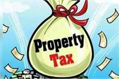 if you paying wrong property tax action may be taken
