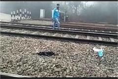 young man jumped in front of express train in sonipat