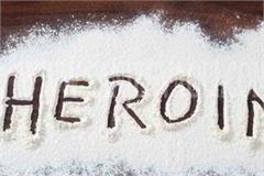 stf arrested heroin smuggler