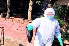 confirmation of bird flu infection in crows in muzaffarnagar