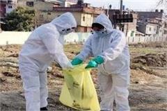 7 birds found dead in shamshi