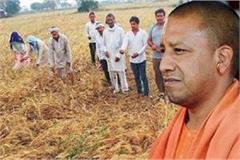 need to link farming with innovative efforts cm yogi