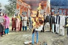 farmers burnt effigy of union agriculture minister