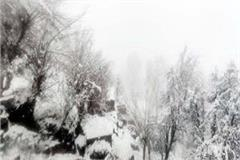 snowfall in pangi