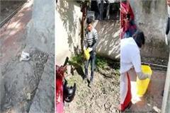 birds found dead in nerchowk