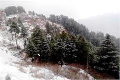snowfall in shimla