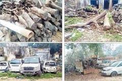 jungle hoon ram bharosa beleaguered smuggler running ax well trees