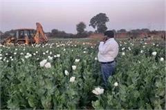 narcotics recoverd 6 crore opium in gwalior