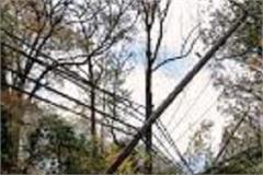 trees fell on gagal chaitadu road big accident averted