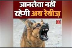 rabies disease will no longer be fatal know how