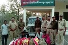 gond smuggler arrested in kahrgon