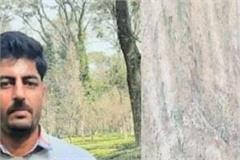 software engineer burnt tea garden on barren land