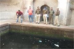youth committed suicide rohtak
