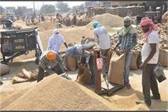 paddy procurement increased in comparison to last year