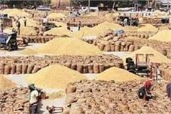 raids on fci many  shellers closed  in punjab