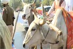 budget session akalis traveled to vidhan sabha police stopped on way