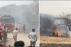fire in fields cow and buffalo die due to scorching